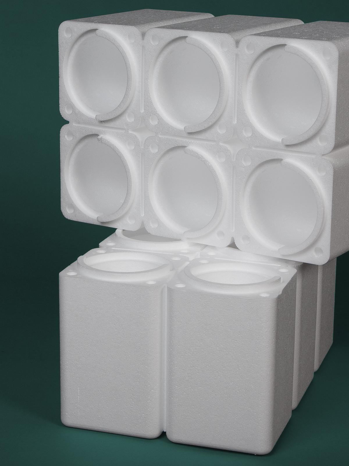Gruppo LAPE divisione Imballaggi cassetta gelato