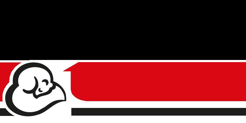 Termolan logo 1995